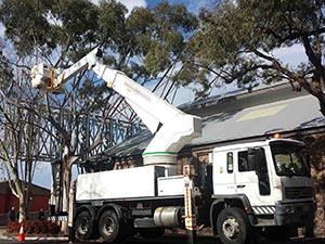 We have the right Cherry Picker for every type of site, all types of work, 24/7